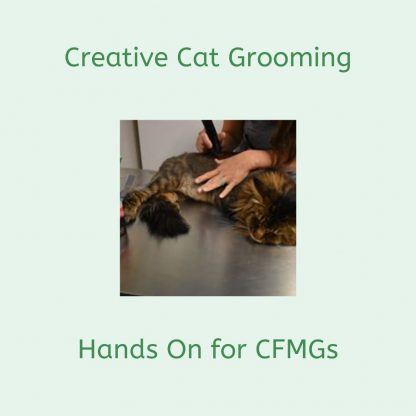Deborah Hansen teaches Creative Cat Grooming