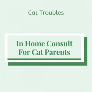 Cat Troubles