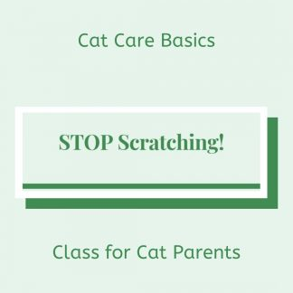 Cat Scratching issues solved!