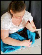Deborah Hansen CFMG, CFCG teaches Cat Grooming.